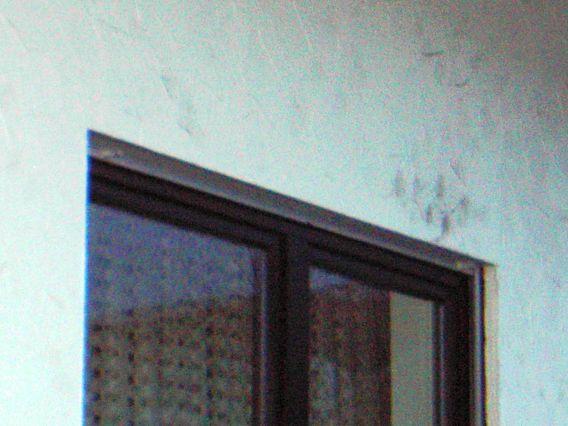 dunkle flecken eichenholz nrw. Black Bedroom Furniture Sets. Home Design Ideas