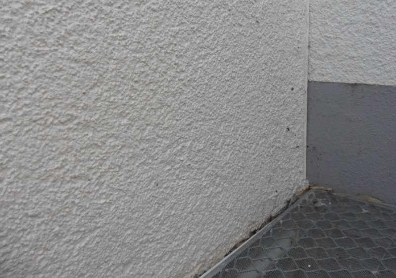 Fabulous BAU.DE - Forum - Außenwände und Fassaden - 15045: Aussenputz RG66