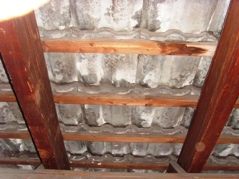 Zwischensparrendämmung Ohne Unterspannbahn : bau de forum dach 16204 dachd mmung innen ohne ~ Lizthompson.info Haus und Dekorationen
