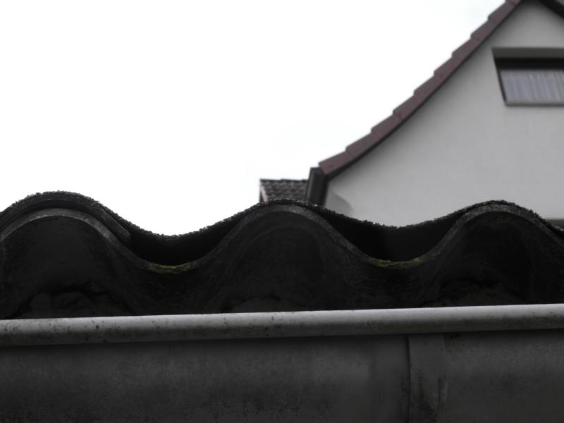 bau de forum dach 16471 garagendach. Black Bedroom Furniture Sets. Home Design Ideas