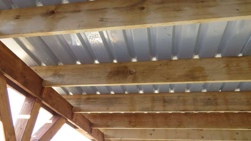 Bau.de forum dach 16638: carport es regnet trotz Überdachung