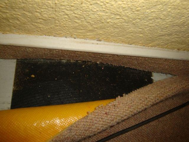 bau de forum estrich und bodenbel ge 14695 flexplatten mit schwarzem kleber berfliesen. Black Bedroom Furniture Sets. Home Design Ideas