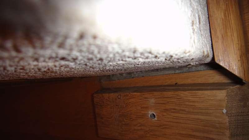 bau de forum estrich und bodenbel ge 14977 abest im. Black Bedroom Furniture Sets. Home Design Ideas