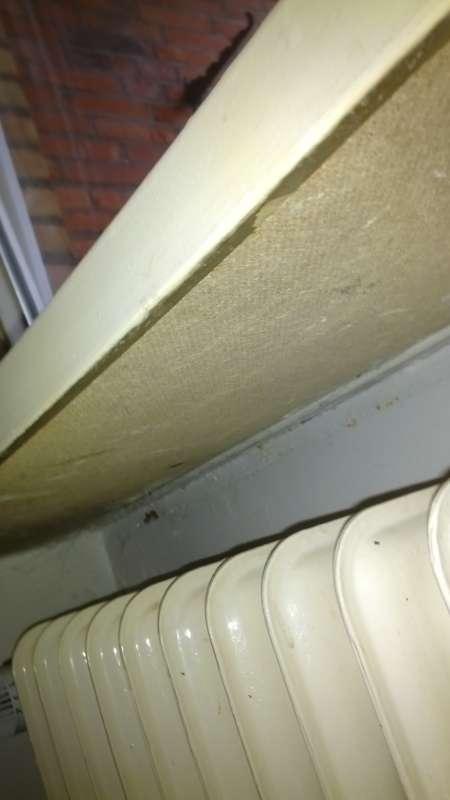 BAU.DE - Forum - Fenster und Außentüren - 14074: Asbestpappe unter ...