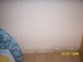 bau de forum modernisierung sanierung bausch den 14338 ursache f r nasse innenwand. Black Bedroom Furniture Sets. Home Design Ideas